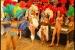 karneval04_pic (04)