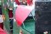 Karneval06_01_0015